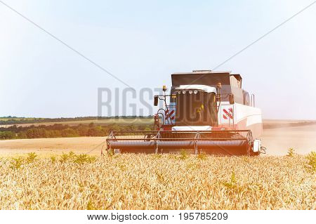 Close up The work of a combine harvester on a golden wheat field on a sunny day against a blue sky