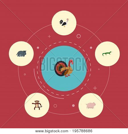 Flat Icons Rooster, Swine, Gobbler And Other Vector Elements
