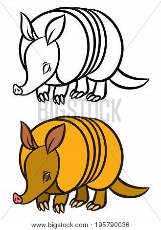 Armadillo hand drawn vector illustration - for children coloring book