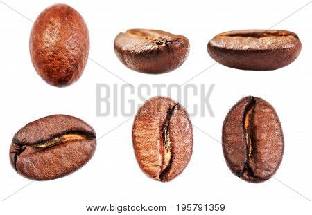 Coffee beans collection Isolated on white background closeup macro