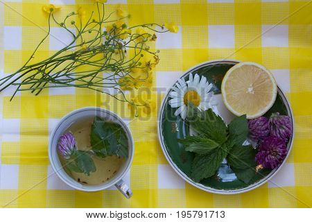 Herbal Tea In A Cup. Saucer With Fresh Mint Leaves, Clover Flowers And Lemon.  Wild Flowers On The T