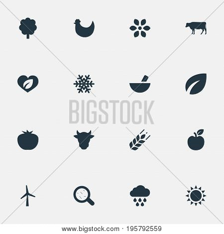 Vector Illustration Set Of Simple Energy Icons