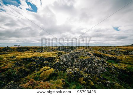 The lava field at Eldhraun, Iceland.Lava terrain covered with green spongy moss.Farm in middle of unusual nature Arctic Circle.Ring rode.Intact nature.Cloudy weather.Hiking route.