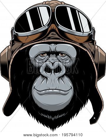 Vector illustration, a gorilla head in a pilot's helmet, on white background