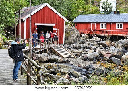 Nusfjord Sightseeing