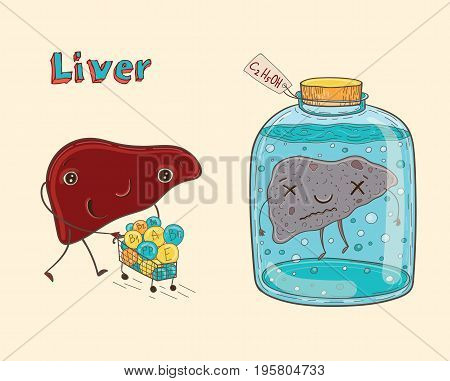 Cartoon vector illustration of healthy and sick human liver. Funny educational illustration for kids. Isolated characters.