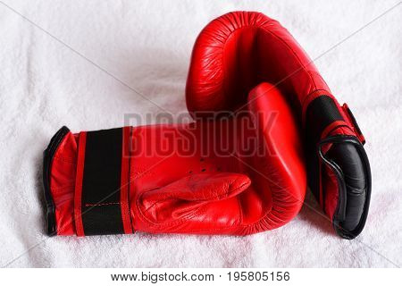 Duet Of Red Gloves For Boxing Made Of Leather