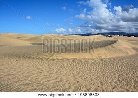 Desert by the sea, sand dunes in Maspalomas, Gran Canaria, Spain