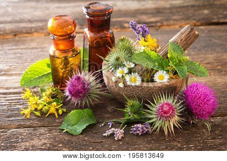 Tincture bottles and healing herbs in mortar on wooden table. Herbal medicine. Medicinal plants