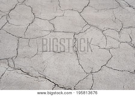 Texture of the old asphalt crosswalk with white color cracked.