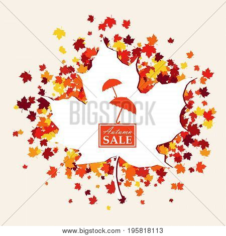 Autumn sale banner of white maple leaf and logo with umbrellas in center in traditional Fall colors - orange yellow red brown. Vector illustration with scattered maple leaves. Isolated
