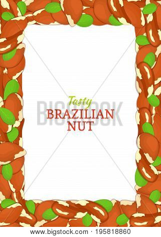 Vertical Rectangle colored frame composed of delicious of brazilian nut. Vector card illustration. Nuts frame, brazilnut fruit in the shell, whole, shelled, leaves for packaging design of food.