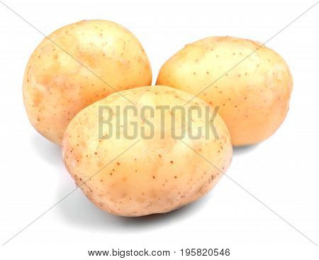 Three whole, ripe, raw and organic new potatoes, isolated on a white background. Summer harvest of healthy vegetables. Clean, fresh and natural potatoes.