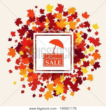 Autumn sale banner of white white square and logo with umbrella in center. Vector illustration with scattered maple leaves in traditional Fall colors - orange yellow red brown. Isolated