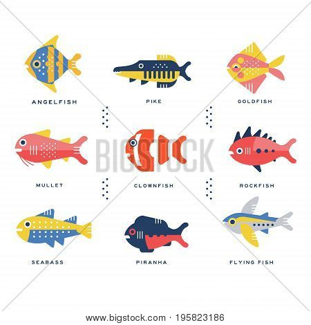 Collection of sea and ocean fish and lettering name in English vector Illustrations on a white background