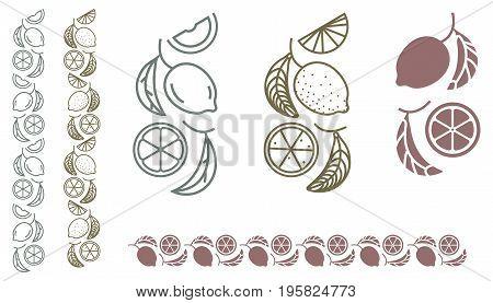 Lemon tree branch. Set of monochrome designer element