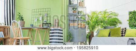 Botanic Design Of Apartment