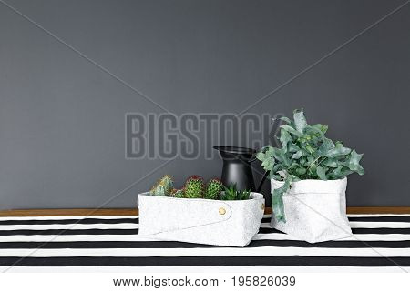 Plants and herbs in eco baskets on dining table