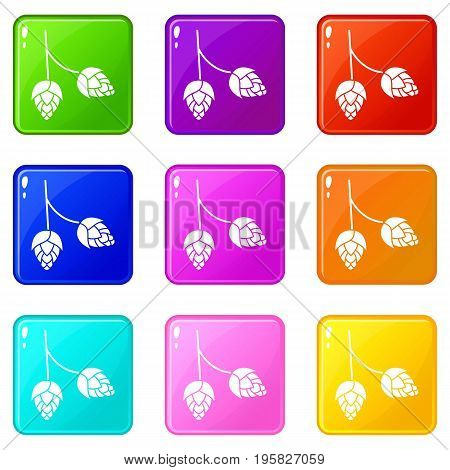 Branch of hops icons of 9 color set isolated vector illustration