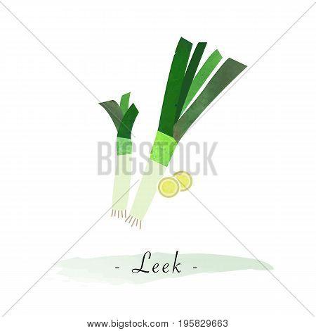 Colorful Watercolor Texture Vector Healthy Vegetable Leek