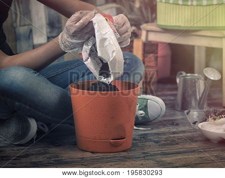 Female hands poured the soil in the flower pot. Hobby people - indoor gardening