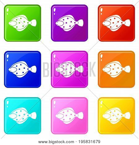 Flounder fish icons of 9 color set isolated vector illustration