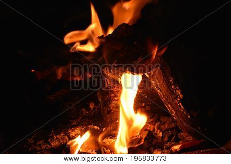 Crisp fire plume with logs on black background