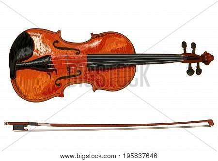 Violin detailed sketch, colored. Isolated on white VECTOR illustration
