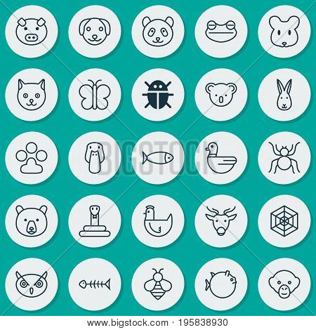 Zoology Icons Set. Collection Of Fish, Night Fowl, Baboon And Other Elements