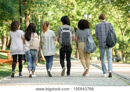 Back view picture of multiethnic group of young students walking outdoors.