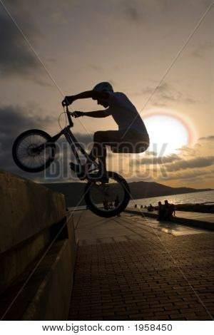 Young With Bicycle