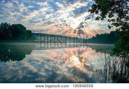 Morning summer scenery on a pond. Relax concept