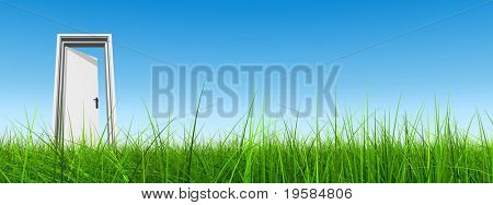 High resolution 3D white door opened in grass to a nice clear blue sky background