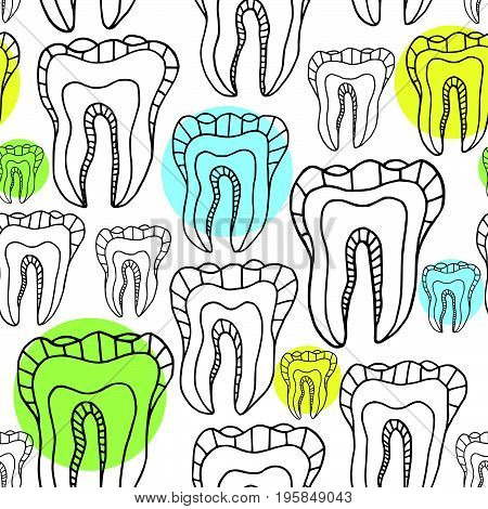 Vector illustration of a human tooth. Seamless pattern of teeth