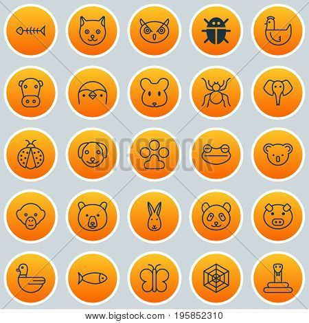 Zoology Icons Set. Collection Of Kitten, Trunked Animal, Serpent And Other Elements