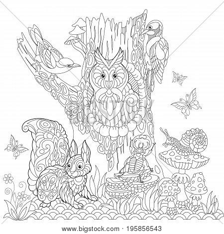 Coloring book page of forest landscape owl cuckoo bird woodpecker squirrel snail stag beetle butterflies. Freehand drawing for adult antistress colouring with doodle and zentangle elements.