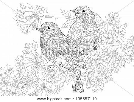 Coloring page of two birds. Freehand sketch drawing for adult antistress colouring book with doodle and zentangle elements.
