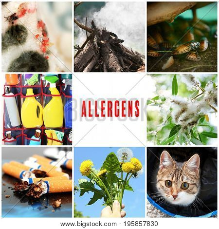 Collage with causes of allergy. Health care concept