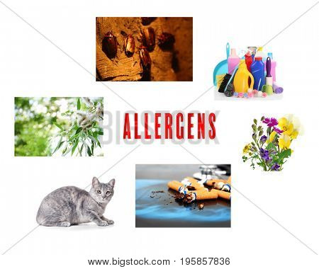 Collage with causes of allergy on white background. Health care concept