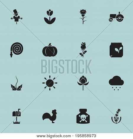 Set Of 16 Editable Planting Icons. Includes Symbols Such As Bugaboo, Hosepipe, Flower And More