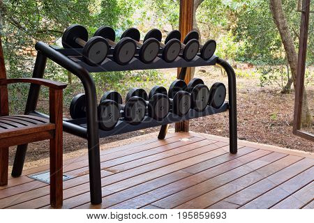 Gym with weights in the forest machine