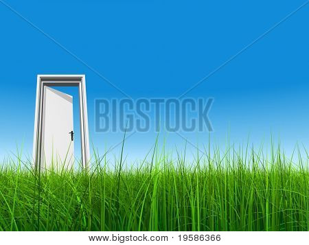 High resolution 3D white door opened in grass to a clear blue sky background