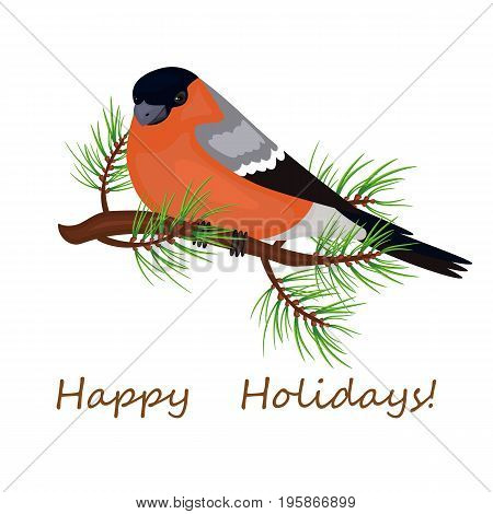 Bird a bullfinch sits on the branch. Christmas card poster. Stock vector.