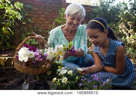 Smiling senior woman carrying flower basket looking at granddaughter while gardening in backyard
