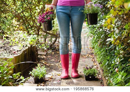 Low section of woman standing with potted plants on footpath in backyard