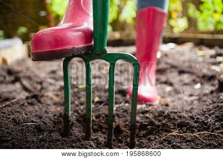 Low section of woman wearing pink rubber boot standing with gardening fork on dirt at backyard