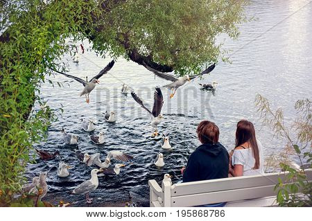 Silhouettes of young couple feeding seagulls on a summer day sitting on the bench. Stavanger Norway.
