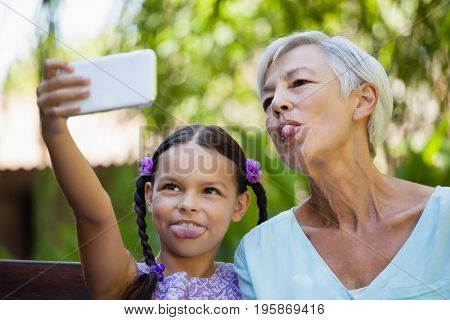 Girl and grandmother sticking out tongue while taking selfie at backyard