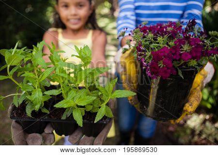 Close-up of girl and senior woman holding plants at backyard