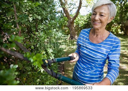 Smiling senior woman trimming plants with hedge trimmer at backyard